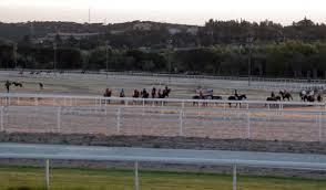 Caballos preparándose en el hipódromo | Foto: Hipódromo de la Zarzuela