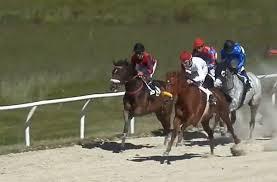 Carrera de caballos en el Hipódromo de Antela | Foto: Hipódromo de Antela