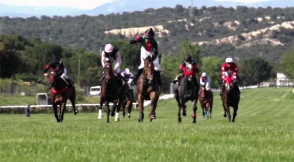 Carreras en Hipódromo de La Zarzuela   Foto: hipodromodelazarzuela.es