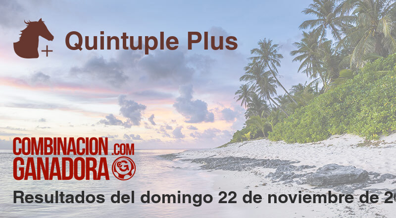 Quintuple Plus del domingo 22 de noviembre de 2020