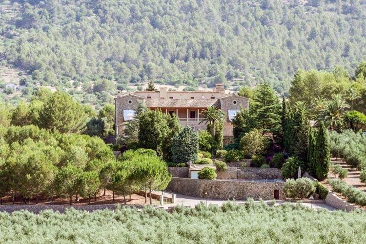 Villa en Baleares con hectáreas de olivos.