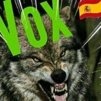 VOX avatar