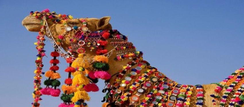 Tierra de Maharajas - Rajasthan